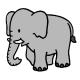 Imatge elefant